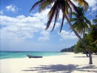 Plage paradisiaque de l'île de Saona - Republique Dominicaine