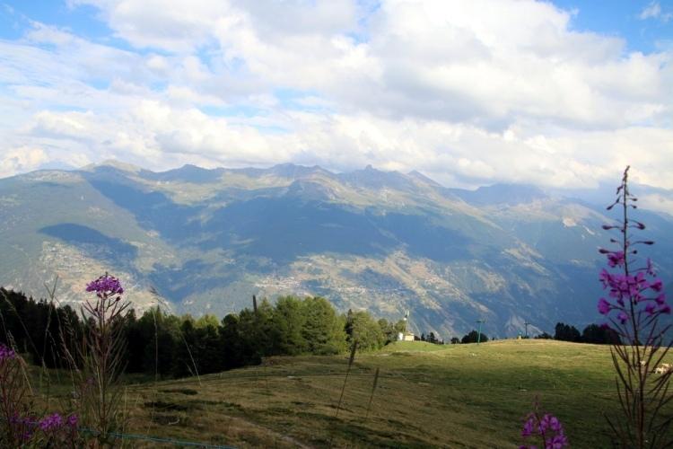 Val d'Hérens : alpage de Thyon