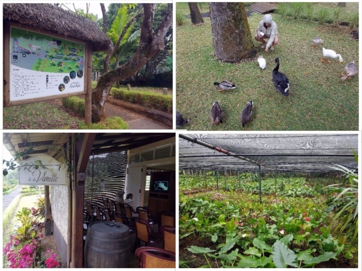 Se cultiver à l'ile Maurice : Le Domaine de Saint Aubin