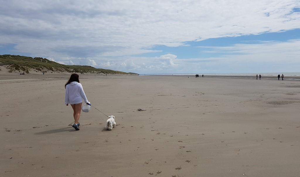 La Baie de Somme : balade sur la plage