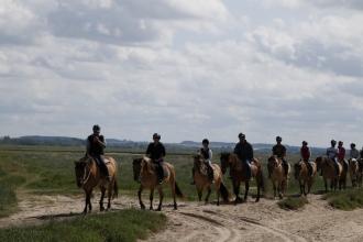 La Baie de Somme : balade à cheval