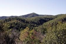 Estartit Costa Brava : collines verdoyantes