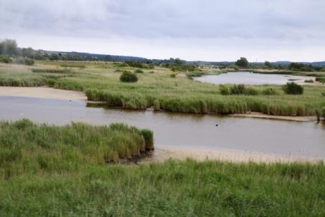 Découvrir la Baie de Somme : marais de la baie
