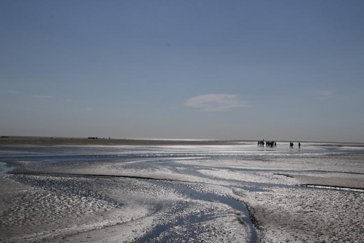 Découvrir la Baie de Somme : Paysage de marée basse