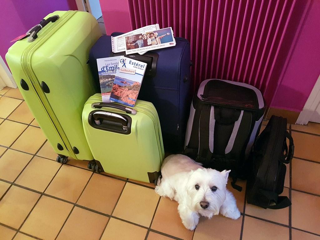 OUI.sncf : Les bagages et le toutou
