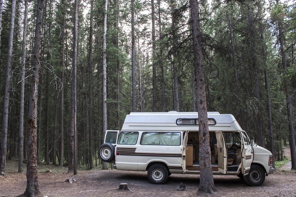 Roadtrip au Canada : Dans les bois