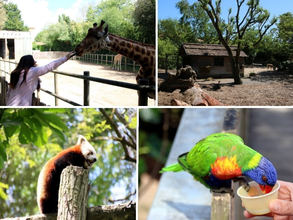 Que faire en Vendée : le Zoo des Sables