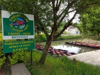 Que faire en Vendée : la Venise Verte