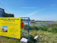 Que faire en Vendée : les Viviers d'Arcay