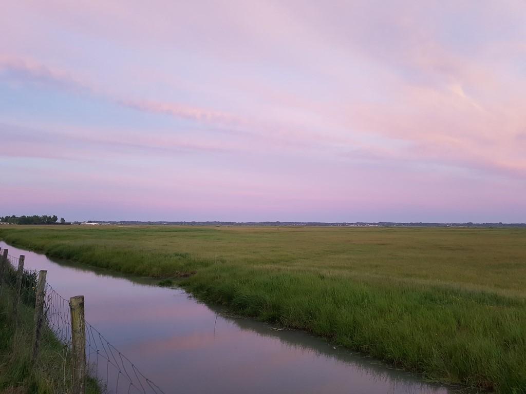 La Vendée : paysage de marais désseché