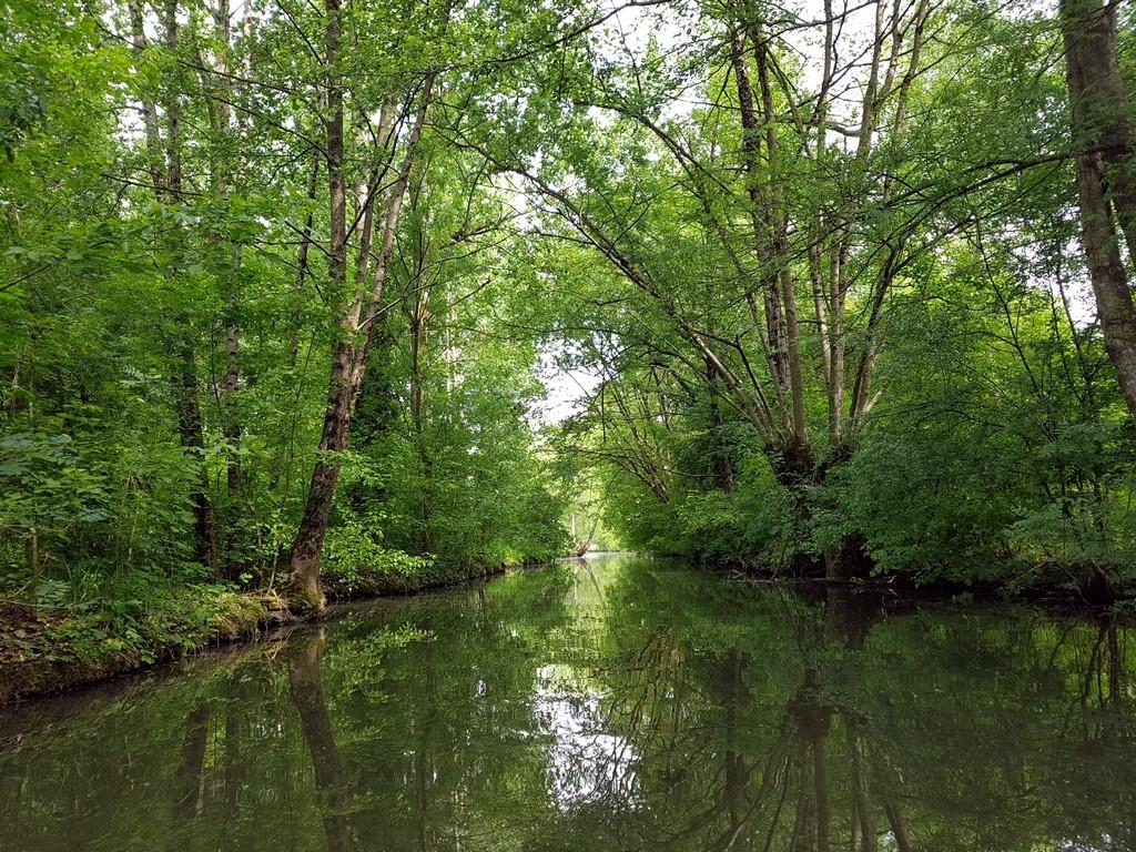 La Vendée : la Venise Verte