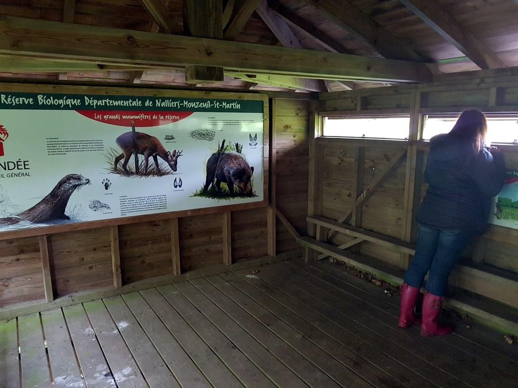 La Vendée : observatoire de réserve naturelle