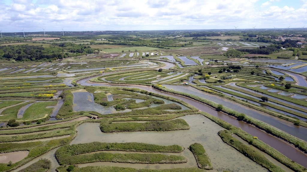 La Vendée : les marais salants de la Guittière