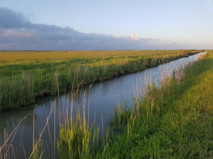La Vendée : paysage du marais désseché