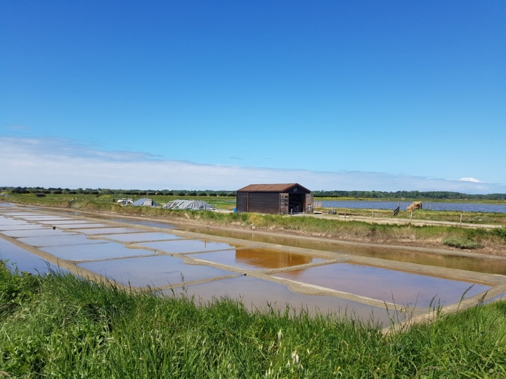 La Vendée : la culture du sel