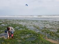La Vendée : farfouiller dans les rochers