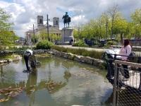 La Vendée : animaux mécaniques à la Roche-sur-Yon