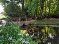 La Vendée : Parc Floral de la Court d'Aron