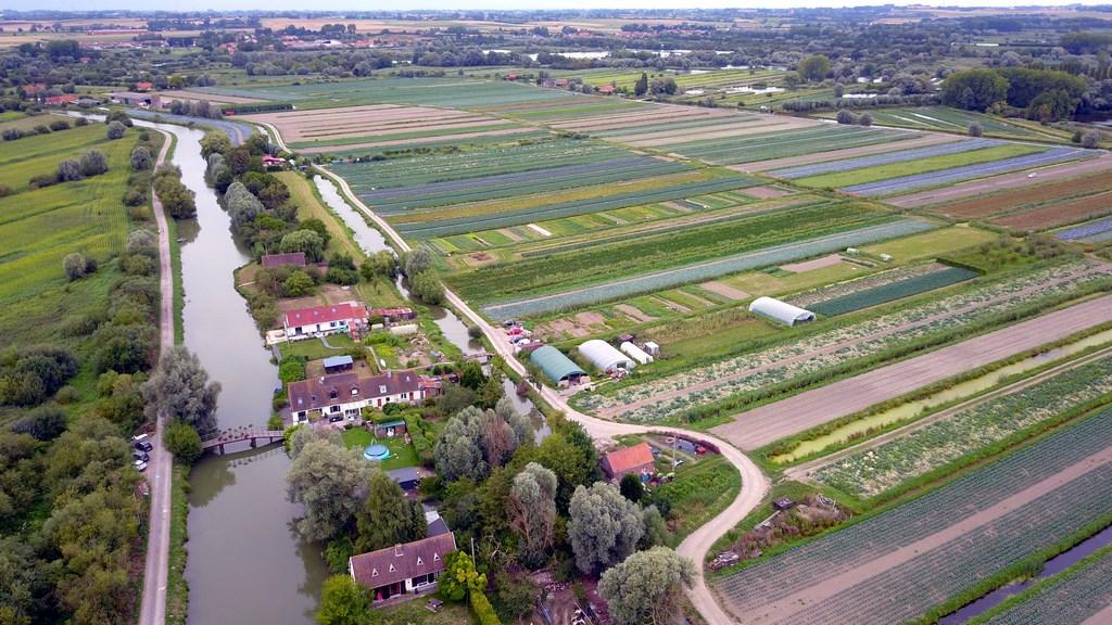 Audomarois : Champs et rivière