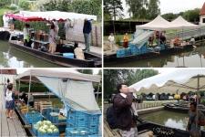 Que  faire dans l'Audomarois ? le marché sur l'eau de Clairmarais