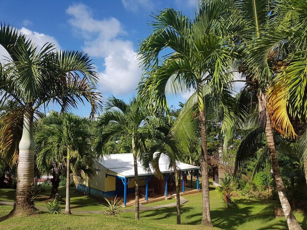 Hiver à la Martinique : Pani pwoblem, bungalow Les Palmiers