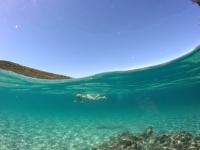 Hiver à la Martinique : Pani pwoblem, faire du snorkeling