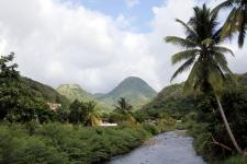 Hiver à la Martinique : Pani pwoblem, Le Carbet