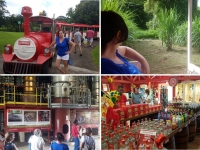 Que faire en Martinique : La distillerie La Mauny