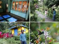 Que faire en Martinique : Le Domaine d'Emeraude