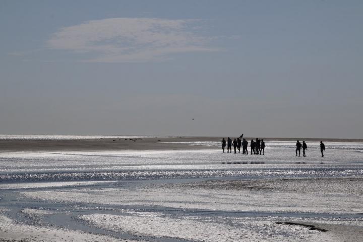 Près de Quend Plage : traverser la Baie de Somme