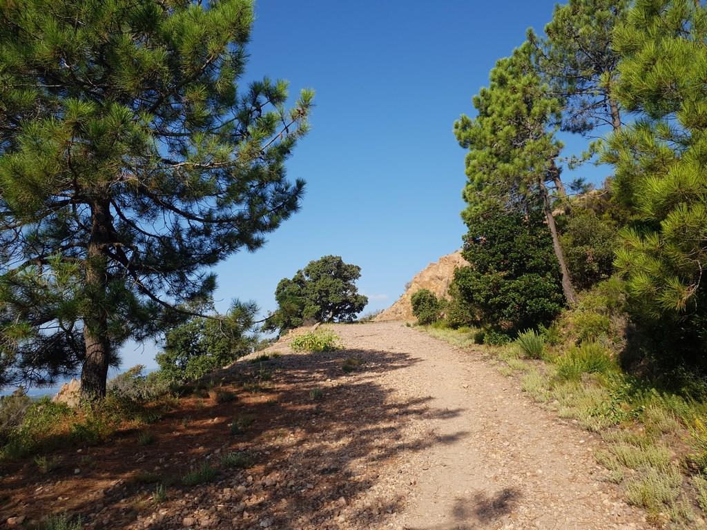 Randonner dans l'Esterel : Au Rastel d'Agay