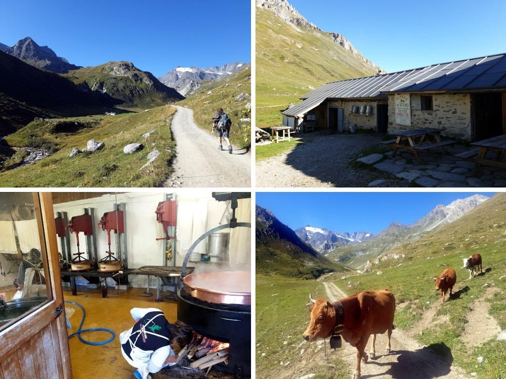 Pralognan en septembre : randonnée à l'alpage de Ritord