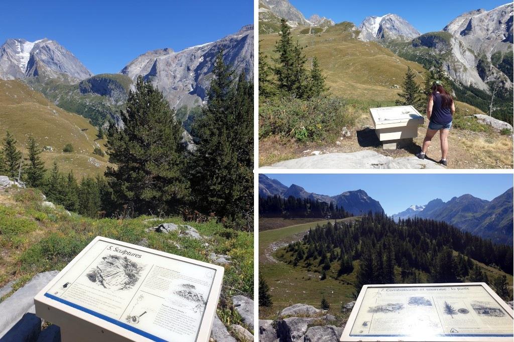 Pralognan en septembre : sentier découverte au Mont Bochor