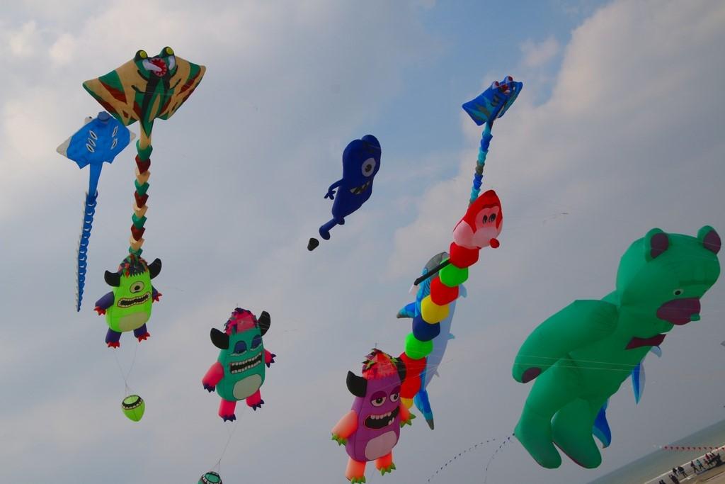 Cerfs-Volants à Berck-sur-Mer : cerfs-volants dans le ciel de Berck