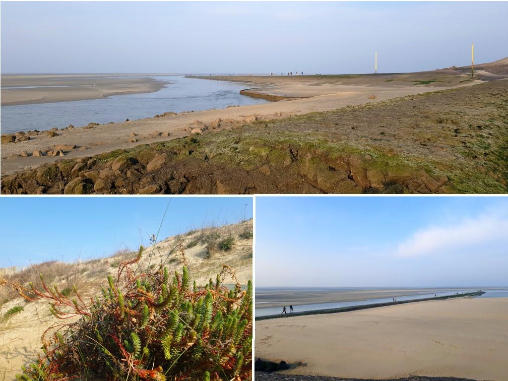 Baie d'Authie à Berck-sur-Mer : découverte de la baie