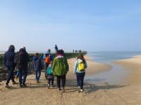 Baie d'Authie à Berck-sur-Mer : aller voir les phoques
