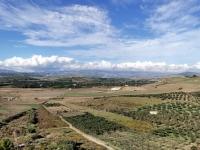 Sicile en Novembre : paysages agricoles
