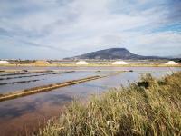 Sicile en Novembre : la route du sel