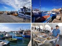 Sicile en Novembre : port de Trapani
