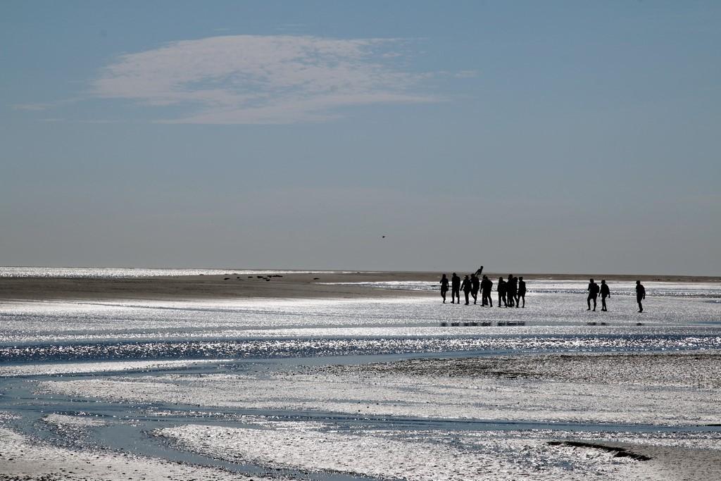 Que faire en Baie de Somme : traverser la Baie de Somme à pied