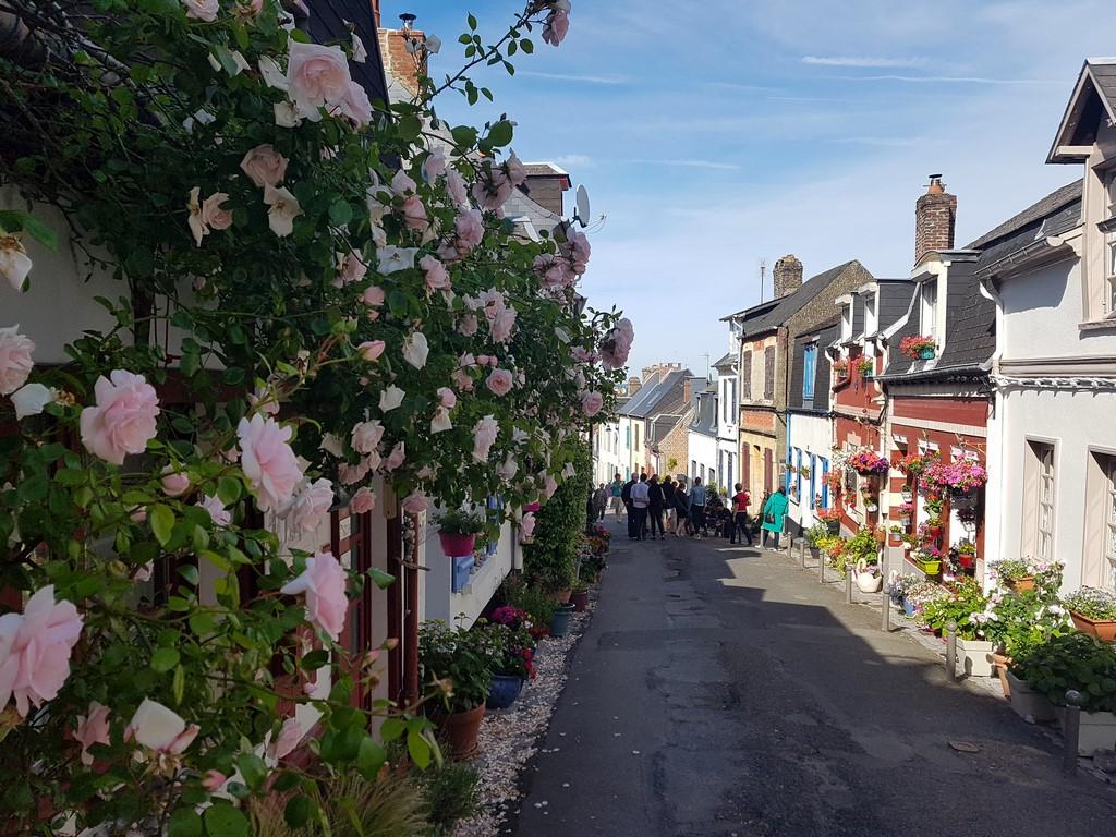 Que faire en Baie de Somme : visiter le Courtgain