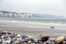 Que faire en Baie de Somme : voir les falaises à Ault