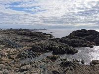 Que voir en Pays Bigouden Sud ?  Une côte sauvage