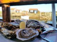 Au Pays de Royan : les huîtres