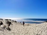 Au Pays de Royan : la plage de la Coubre