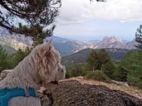 Corse en Septembre : col de bavella