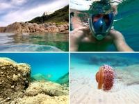 Snorkeling en Corse en Septembre