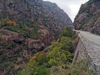 Corse en Septembre : Défilé de l'Inzecca