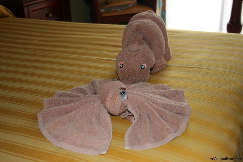 Pliage De Serviette De Bain En Cygne #12: Les Vadrouilleurs