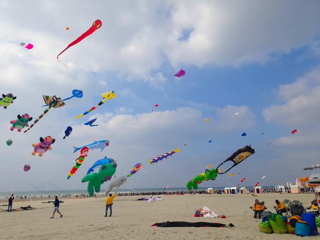 Cerfs-Volants à Berck : cerfs-volants dans le ciel de Berck
